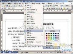 Word2003文档设置文字水印方法