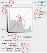 很详细的PS曲线教程,教你轻松运用PS曲线工具
