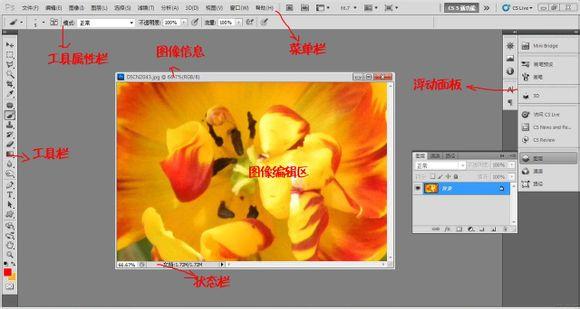 Adobe Photoshop CS5绿色破解中文版免费下载