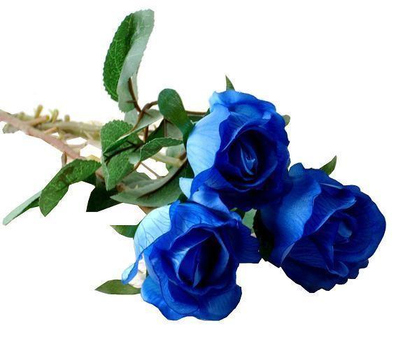 步骤 简单 玫瑰花展示