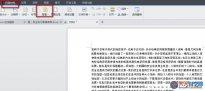WPS文字设置背景的方法步骤