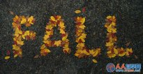 Photoshop制作非常有趣的秋季树叶字