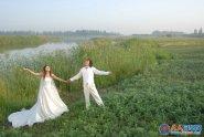 Photoshop给芦苇边的情侣加上唯美的晨曦