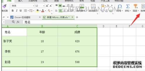 如何在wps表格中设置按姓氏排序