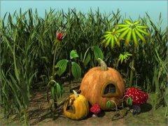 XFrog与3DsMax绘卡通菜园:南瓜篇