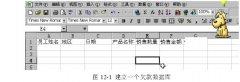 建立和使用Excel数据清单