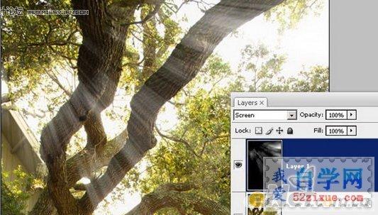 photoshop制作射入森林中的太阳光线(2)